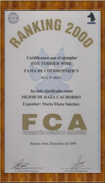 FCA Ranking 2007